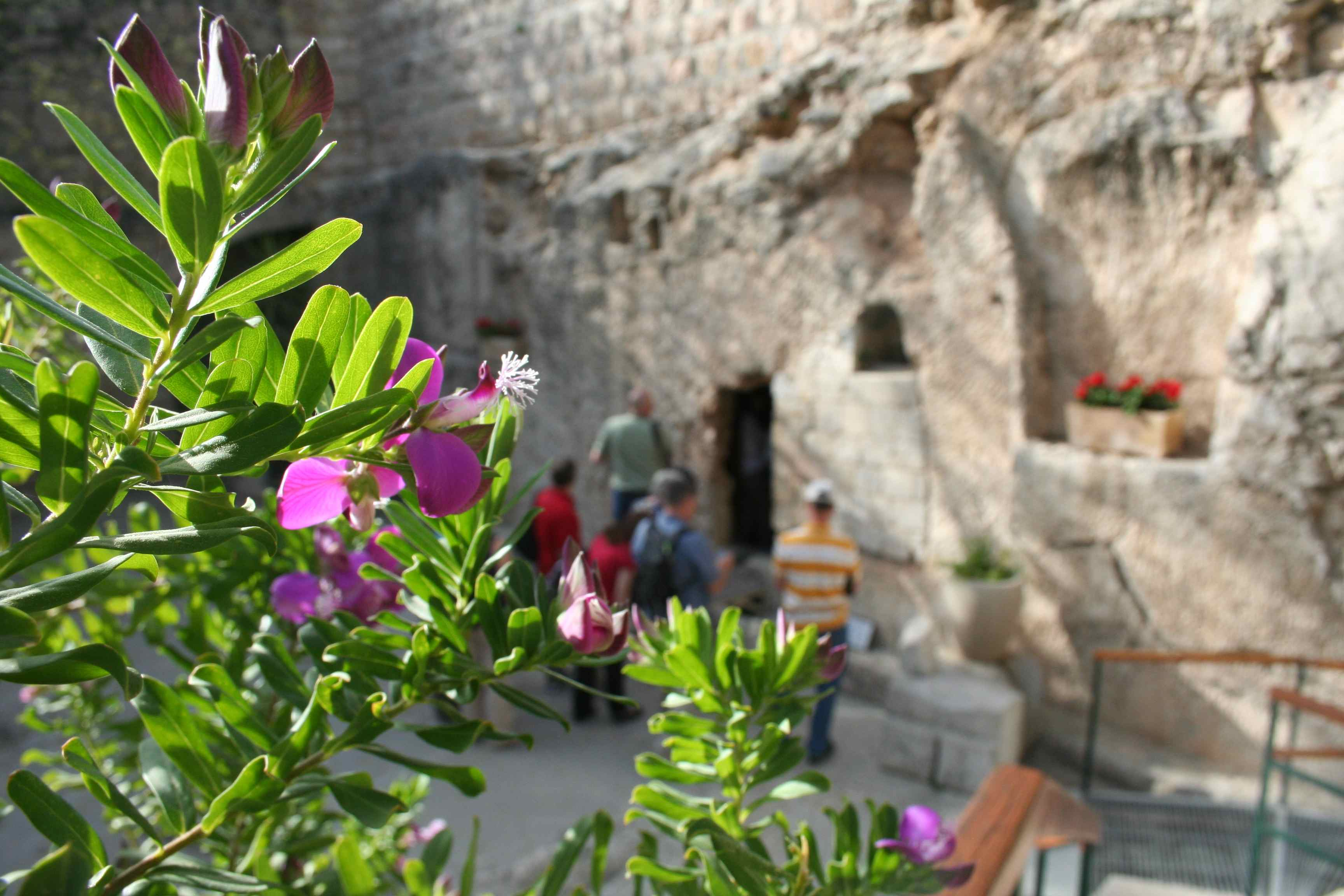 Days in Jerusalem: Pictures of the Wailing Wall and the Garden Tomb