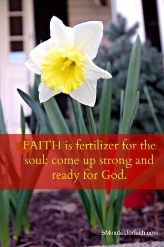 Faith is fertilizer for the soul.jpg