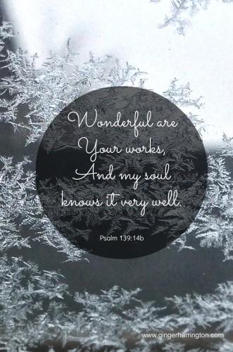 Psalm 13914 Snowflakes