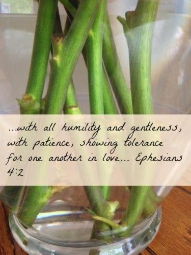 Ephesians 42.jpg
