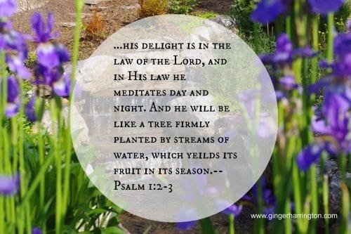 Psalm 12-3.jpg