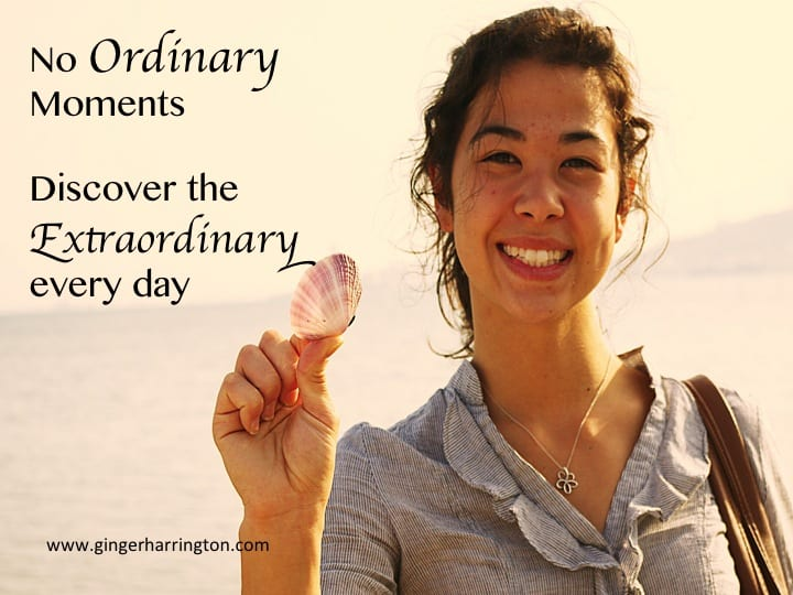 No Ordinary Moments: Discover Grace in the Small Things