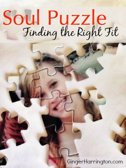 Soul Puzzle: Finding the Right Fit