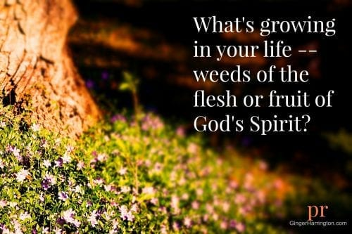 Weeds of the flesh choke out the fruit of God's Spirit if we let them grow.
