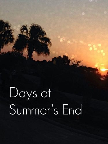 Days at Summer's End