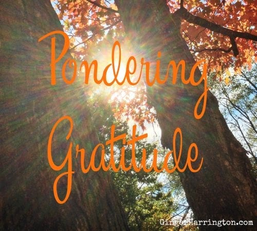 Pondering Gratitude