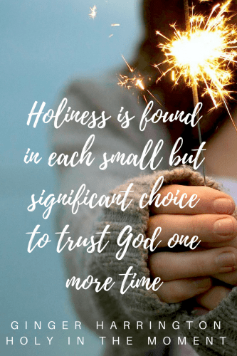 Dispelling the idea that holiness is merely a religious version of perfectionism, Holy in the Moment includes Ginger's personal journey in finding help and hope for anxiety as well as biblical insights, and simple ideas to enjoy a deeper life and freedom in our identity in Christ.