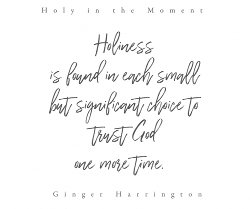 Packed with truths, ideas, and stories, Holy in the Moment will encourage women to make the practical and holy choice to rely on Christ in the moment.