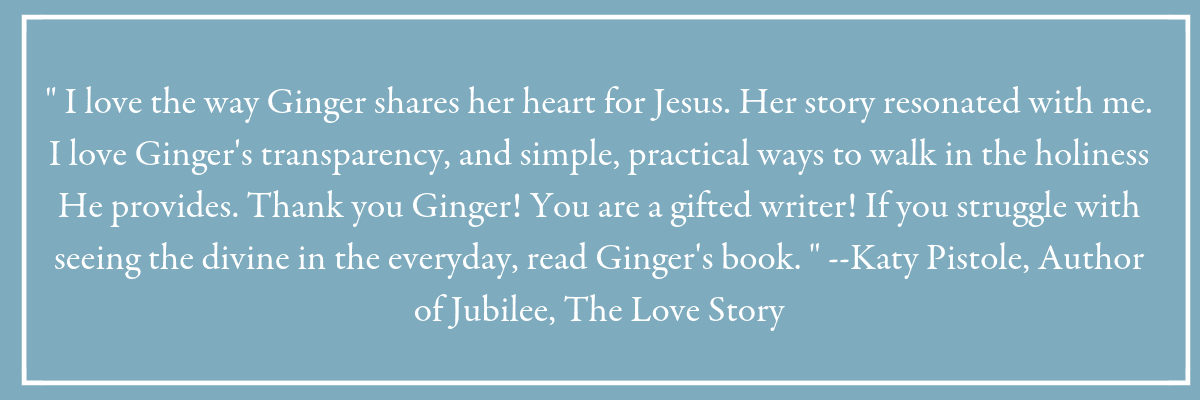 """ I love the way Ginger shares her heart for Jesus. Her story resonated with me. I love Ginger's transparency, and simple, practical ways to walk in the holiness He provides. Thank you Ginger! You are a gifted writer! If you struggle with seeing the divine in the everyday, read Ginger's book. "" --Katy Pistole, Author of Jubilee, The Love Story. Blue box with a quote from a reader of the book Holy in the Moment."