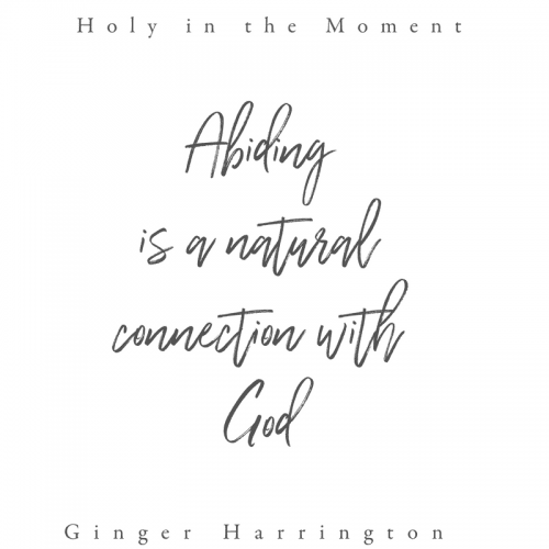 Abiding is a natural connection with God. Choosing to abide, surrender, and rest opens the door to abundant  life in Christ