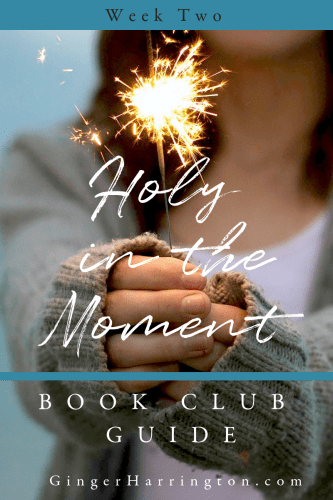 Join us for Week 2 of the Holy in the Moment Online Book Club at GingerHarrington.com. Holy moments are yours for the choosing. Today we're talking about abiding, surrendering, and resting--chapters 4-6 of the award-winning book by Ginger Harrington.