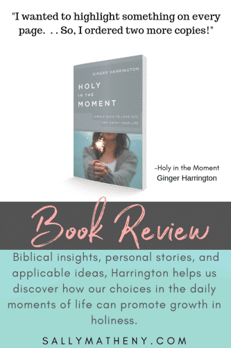 Book cover of Holy in the Moment with quote from reviewer, Sally Matheny.
